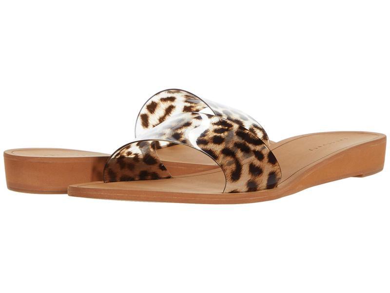 サンクチュアリー レディース ヒール シューズ Rejoice Brown Leopard