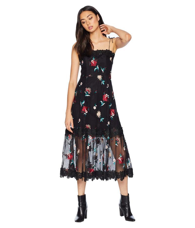 ビービーダコタ レディース ワンピース トップス Let's Dance Embroidered Mesh Midi Dress Black
