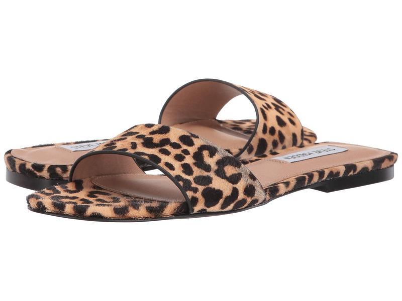 スティーブ マデン レディース サンダル シューズ Bev Flat Sandal Leopard