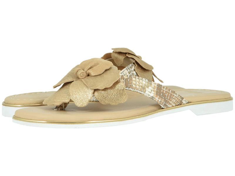 ジョンストンアンドマーフィー レディース サンダル シューズ Reanne Gold Metallic Italian Suede/Snake-Print Italian Leather