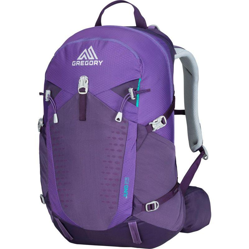 グレゴリー メンズ バックパック・リュックサック バッグ Juno 25 3D-Hyd Hiking Backpack Mountain Purple - Small