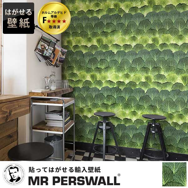壁紙 輸入壁紙 MR PERSWALL Daily Details