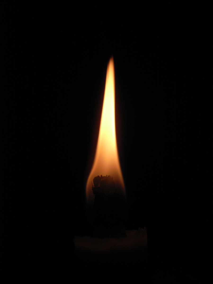 """[] [蠟燭]、 [蠟燭] [日本蠟燭""""和""""100%植物性 OMI 手工日本蠟燭""""大和彩色蠟燭-空間 (5 件) 蠟燭 / 蠟燭 / 蠟燭 / 蠟燭 / 總結 / 工藝品 / 禮品 / 蠟燭 / 禮品 / 小工具)"""
