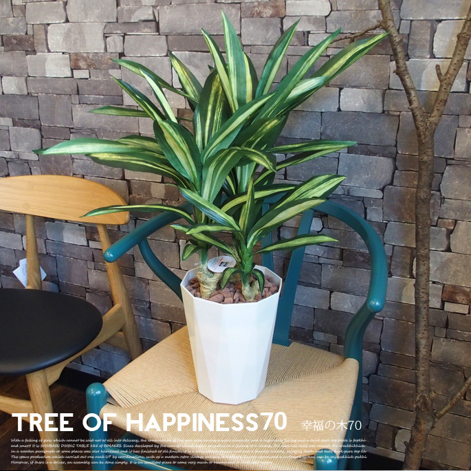 幸福の木70 光触媒 イミテーショングリーン(Imitation Green)