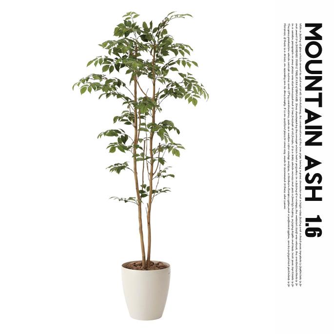 マウンテンアッシュ1.6(mountain ash ) 光触媒 イミテーショングリーン 送料無料
