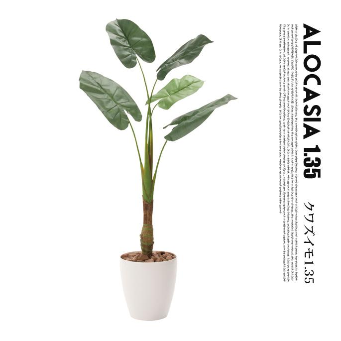 くわず芋1.35(alocasia odora) 光触媒 イミテーショングリーン 送料無料