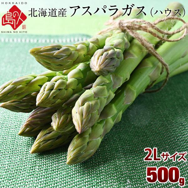 北海道産 グリーン アスパラ 2Lサイズ 500g