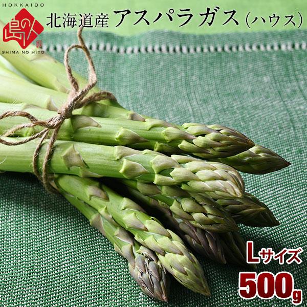 北海道産 早春ハウスアスパラ グリーンアスパラ Lサイズ 500g(17~22本入り) 共撰品 秀品
