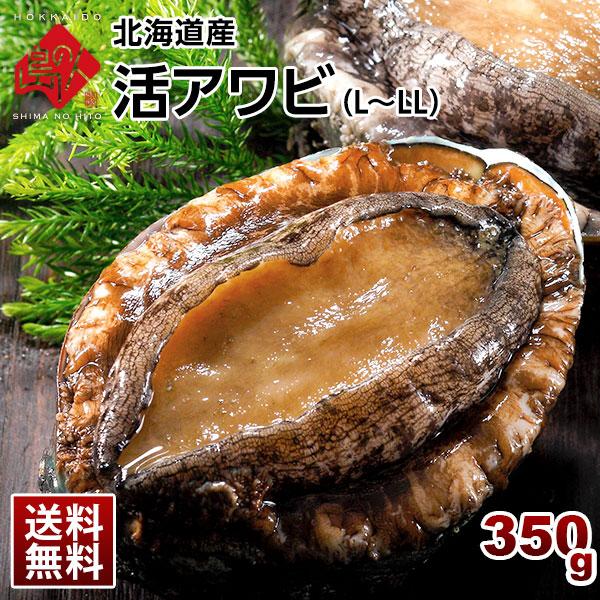 北海道産 活アワビ 350g(3-4個) L-LLサイズ