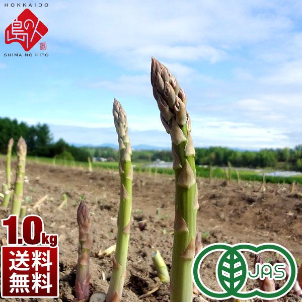 北海道 赤井川産 アスパラ 有機JAS グリーンアスパラガス1.0kg(500g×2)【送料無料】