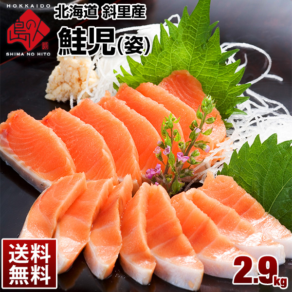 【斜里産】鮭児 姿1尾 2.9kg 10,000本に1、2本しか獲れない超希少な鮭 ケイジ!
