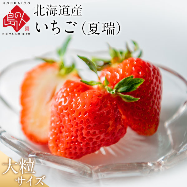 【今季は終了いたしました】北海道産 いちご 夏瑞 180g×2パック(1パック5~6粒)【送料無料】