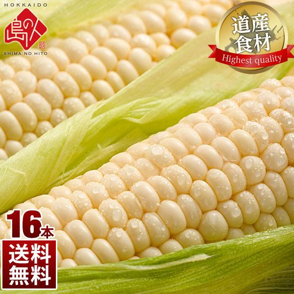 北海道産 とうもろこし ピュアホワイト(L~2L) 16本 生で食べても甘い!【送料無料】