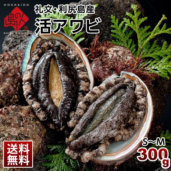 礼文・利尻島産 活アワビ 300g(4-5個) S~M