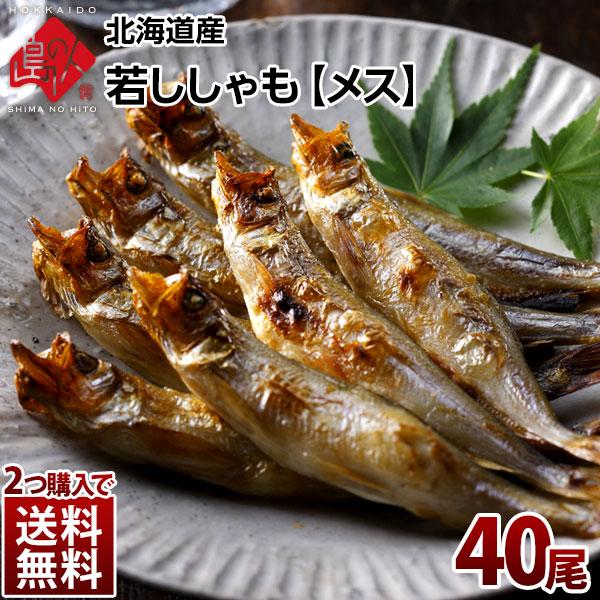 黄金に輝く北海道産の若ししゃもお酒の肴に最適 北海道産 売り出し 若ししゃも 即納最大半額 メス 40尾 2つで送料無料 ジュージューっと滴るほどの脂のり おつまみにもおすすめ北海道産 グルメ 食品 高級 お取り寄せ 柳葉魚 冷凍 鮮魚 魚 食べ物 お土産 シシャモ 海鮮