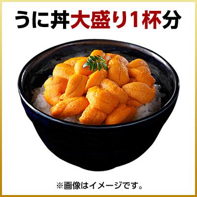 Raw Green Sea Urchin 90 g salt Pack Rebun and Rishiri Island from sea urchin pulcherrimus saltwater Hokkaido souvenirs can be ordered 2015 gift gift mother father so students like Urchin like Hokkaido