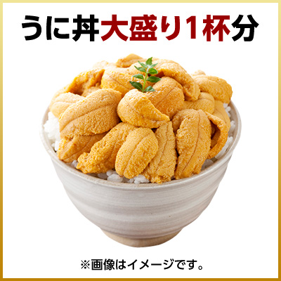 Like Sea Urchin raw sea urchin Strongylocentrotus nudus 90 g salt Pack Rebun and Rishiri Island produced so students like Sea Urchin purple sea urchin saltwater Hokkaido souvenir sweets gift salt like Sea Urchin