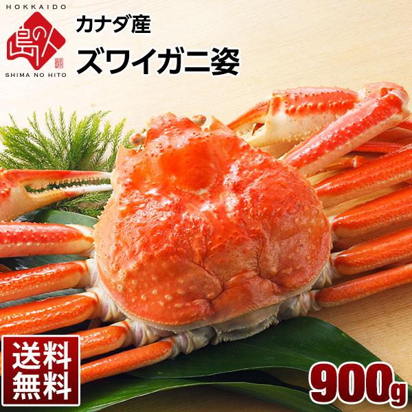 本ズワイガニ(姿) 900g【送料無料】 プレミアム級ズワイガニを堪能