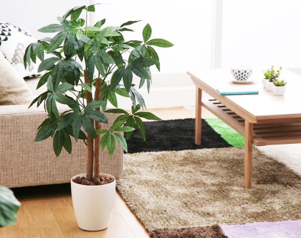 光触媒 観葉植物 フェイクグリーン パキラ Mサイズ 消臭 送料無料