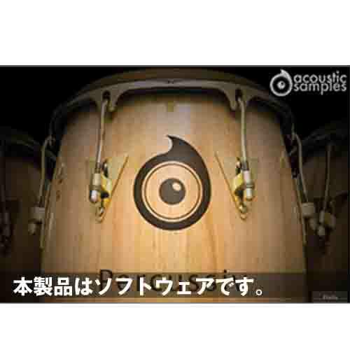 Acoustic Samples Percussiv(オンライン納品専用) ※代金引換はご利用頂けません。, 桂村:dd8d3dc1 --- marketingeye.jp