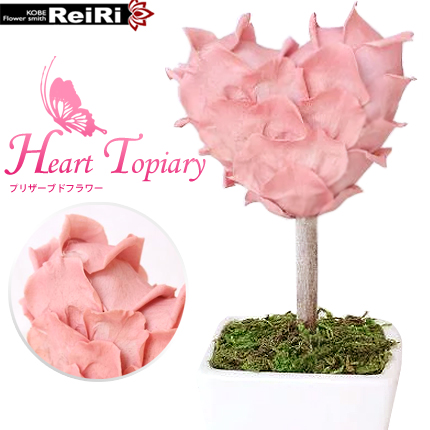 Preserved Flower Gift Heart Topiary Cherry Blossom Grandparents Day Wedding Gifts Birthday Women Female Friend Who