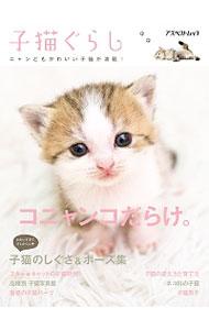 送料無料 本日の目玉 期間限定特価品 中古 子猫ぐらし