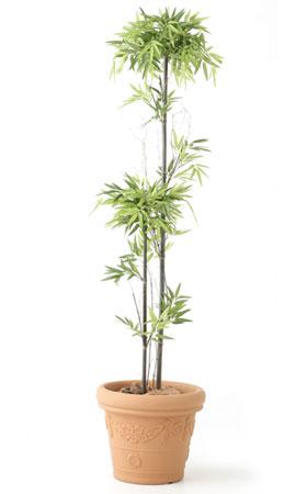 【受注】【人工植物】【無光触媒加工】 黒竹 1.5m