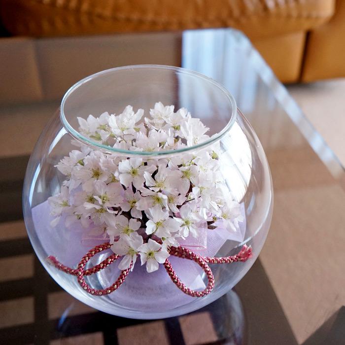 送料無料 ボトルフラワー 啓翁桜(ラウンド型) 組紐リボン 大サイズ 約直径16cm×高さ15cm 1個 LABINKA さくら