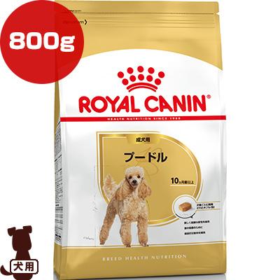 独特で美しいカーリーヘアのために ロイヤルカナン BHN 大放出セール プードル 成犬用 800g g 犬 (訳ありセール 格安) ドッグ フード アダルト ブリードヘルスニュートリション ペット