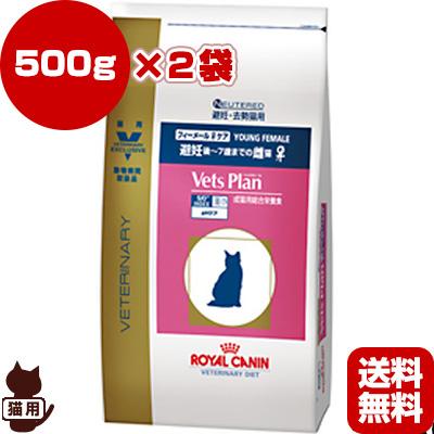 避妊後から7歳頃までの雌猫のために ロイヤルカナン ベッツプラン 猫用 フィーメールケア 送料無料 激安 お買い得 キ゛フト 500g×2袋 b ペット 準療法食 避妊猫 期間限定で特別価格 キャット猫 フード