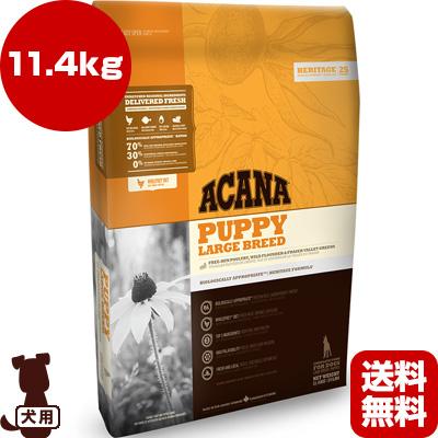 ■アカナ パピーラージブリード 11.4kg アカナファミリージャパン ▼g ペット フード 犬 ドッグ ACANA 送料無料 同梱可