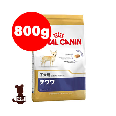 小さな顎のために特別に設計されたキブル ロイヤルカナン BHN チワワ 子犬用 入手困難 800g g ドッグ 犬 ペット ブリードヘルスニュートリション ついに再販開始 パピー フード