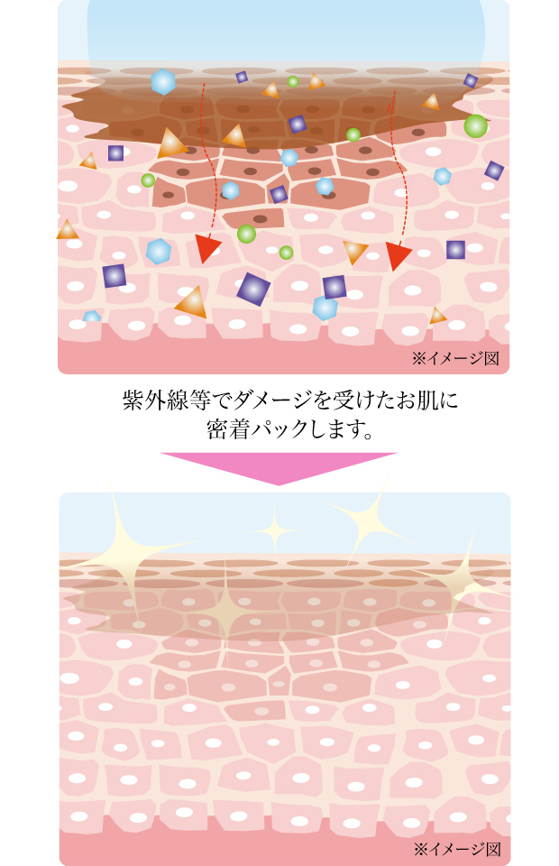 【定形外郵便送料無料】シミコ〜ムD