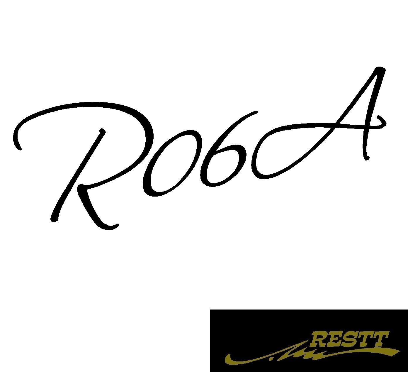 ストア 豊富なカラー20色から作成ドレスアップステッカー エンジン形式 R06A カッティングステッカー 予約販売 ロゴ 小サイズ