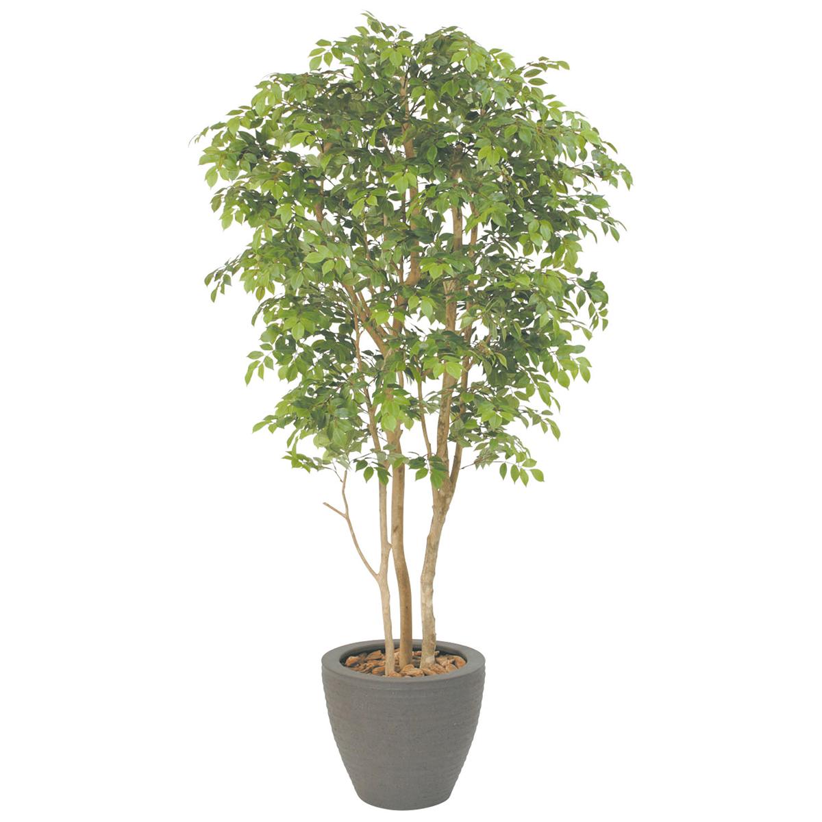 オフィスにグリーンを  シマトネリコ H1500mm HBKD-1-005  インテリアグリーン オフィスグリーン 観葉植物 フェイクグリーン