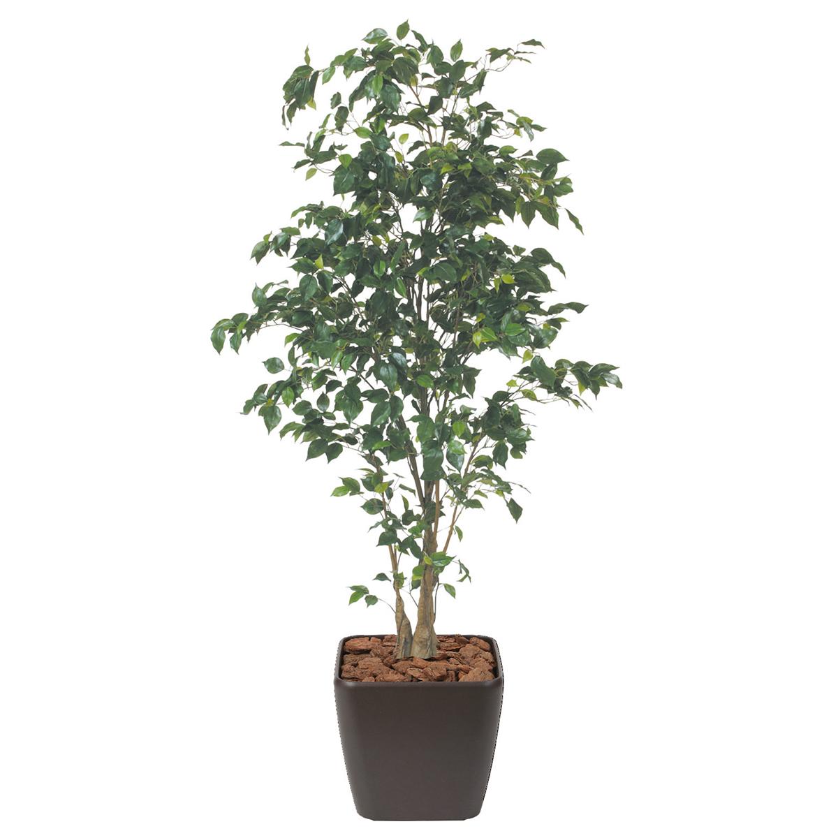 送料無料激安祭 オフィスにグリーンを ベンジャミン H1800mm HBKD-1-020 希望者のみラッピング無料 インテリアグリーン フェイクグリーン 観葉植物 オフィスグリーン