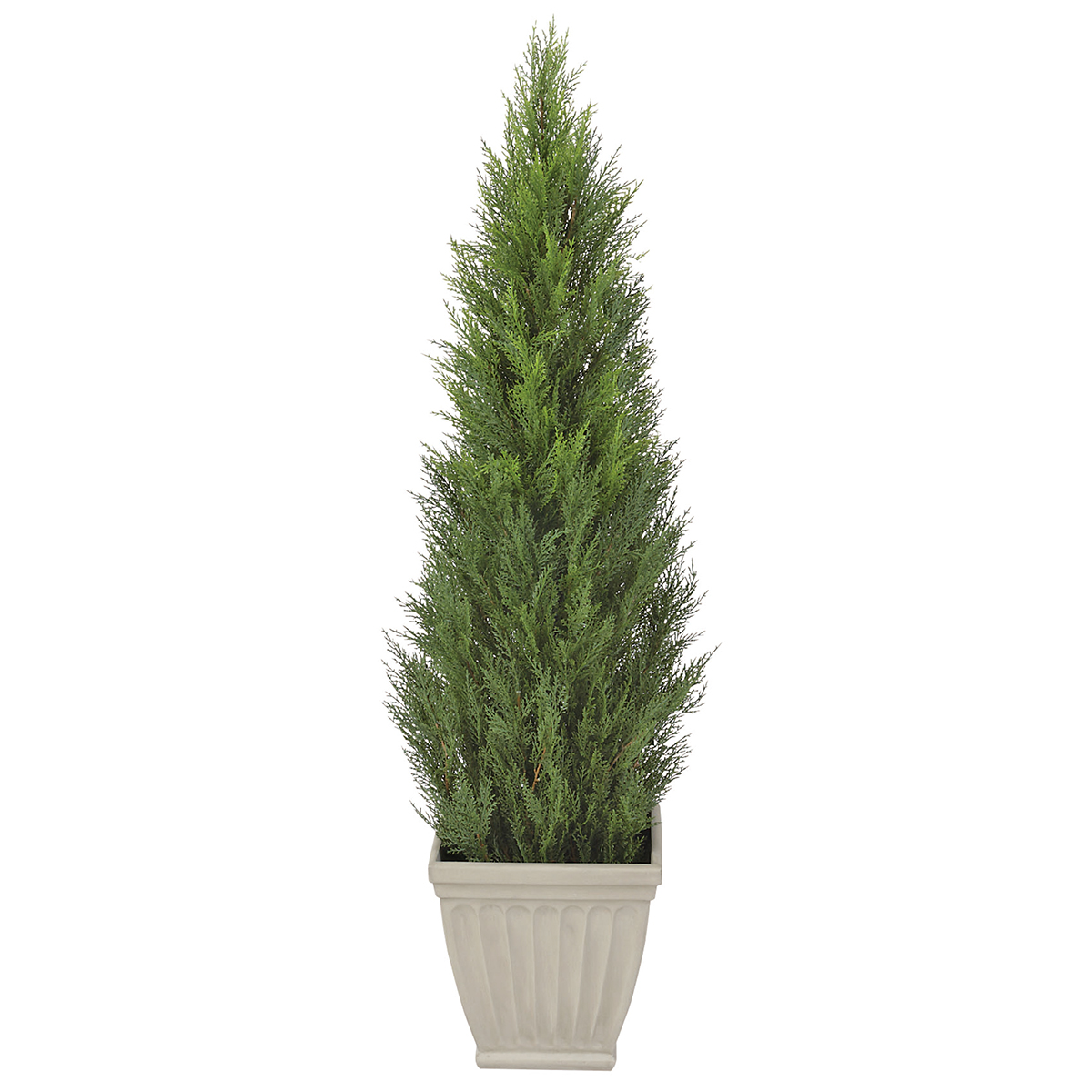 堅実な究極の HBKD-1-028   観葉植物 インテリアグリーン フェイクグリーン オフィスグリーン:R.F.YAMAKAWA H1500mm コニファー-花・観葉植物