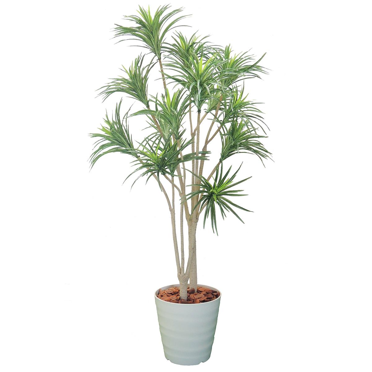 ドラセナコンシンネ H1500mm HBKD-2-018 観葉植物 インテリアグリーン フェイクグリーン オフィスグリーン