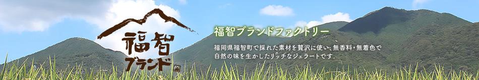 福智ブランドファクトリー:あまおう・いちじく等自然豊かな福智町の素材を活かしたリッチなジェラート
