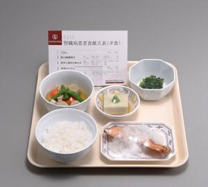 腎臓病患者食品模型 12種