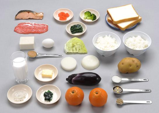 《坂本モデル》六大基礎食品分類模型 23種