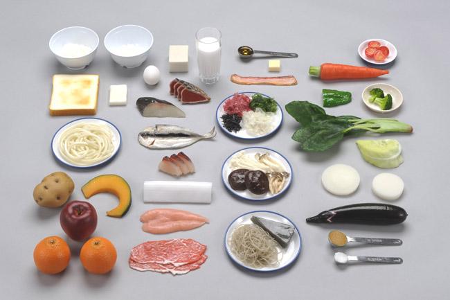 《坂本モデル》糖尿病治療のための食品交換模型 36種
