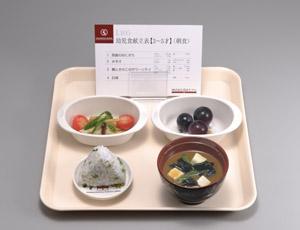 《坂本モデル》幼児食模型(3~5才) 15種