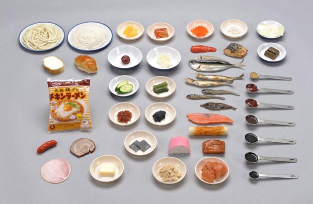 塩分含有量食品模型 40種