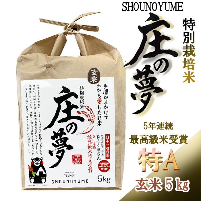 熊本県産 減農薬 減肥料 期間限定送料無料 こだわり農法 環境に優しい セール商品 スリム米 甘い 愛情たっぷり 森のくまさん 特別栽培米 特A 庄の夢 玄米5kg