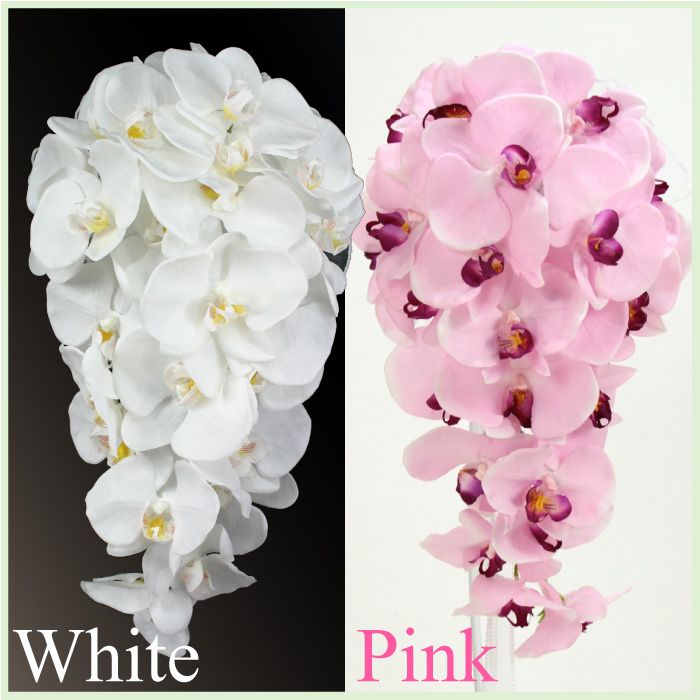 rmflower | Rakuten Global Market: Phalaenopsis Orchid cascade ...