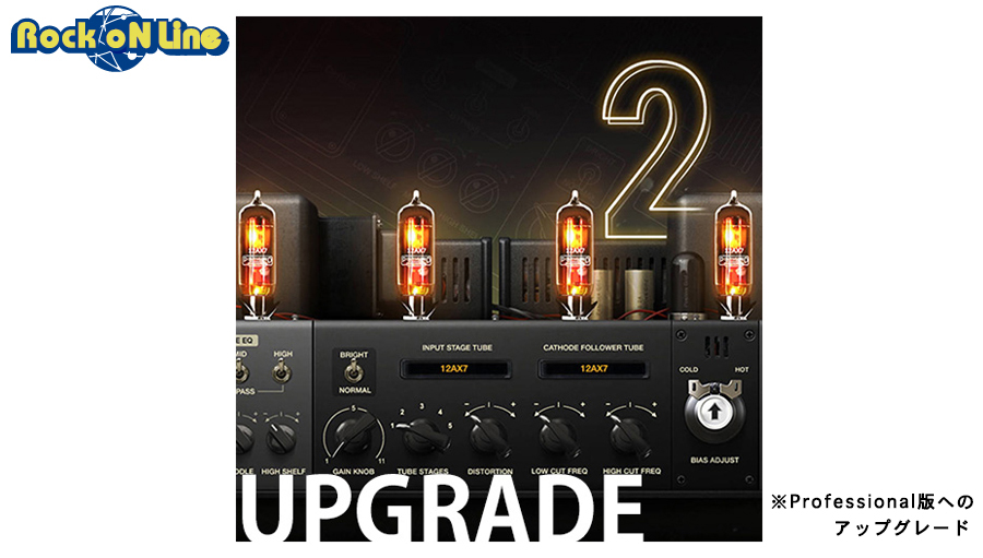 Positive Grid(ポジティブ グリッド) Upgrade From BIAS AMP 2 Standard to BIAS AMP 2 Professional【※シリアルPDFメール納品】【DTM】【ギターアンプ(Amp)・シミュレーター】