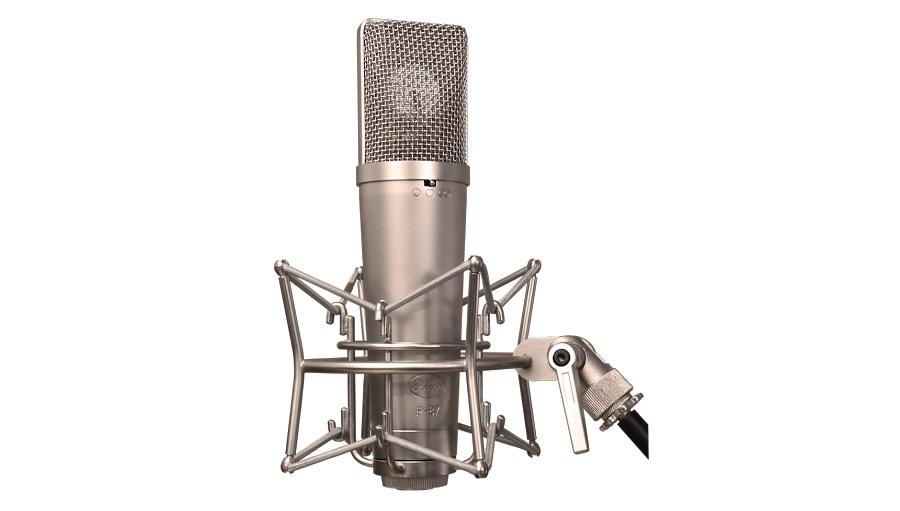 【クーポン配布中!】Peluso Microphone Lab(ペルーソマイクロフォンラボ) P-87【コンデンサーマイク】【レコーディング】