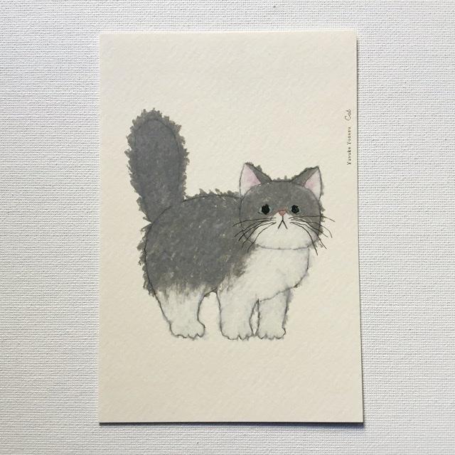 米津祐介 Yusuke Yonezu ポストカード ネコ Cat おすすめ キャット 一部予約