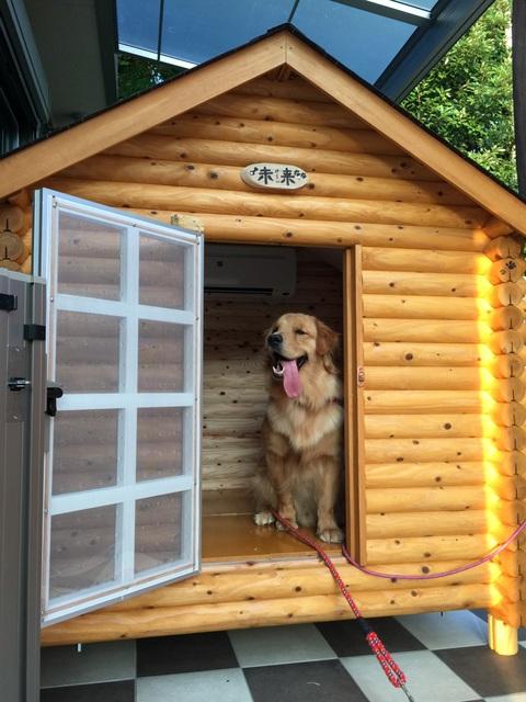 ログペットハウス 1550型 スタンダード犬小屋 屋外 大型犬 中型犬 小型犬 柴犬 ゴールデンレトリバー 犬小屋 ラブラドールレトリバー 犬舎